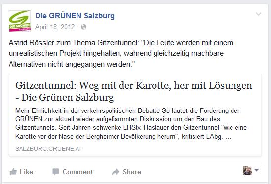 GRÜNE_Gitzentunnel2